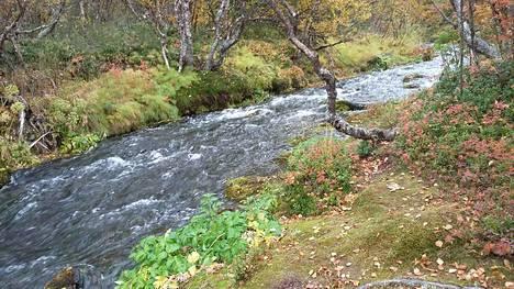 Puro virtaa Utsjoen Kevolla.