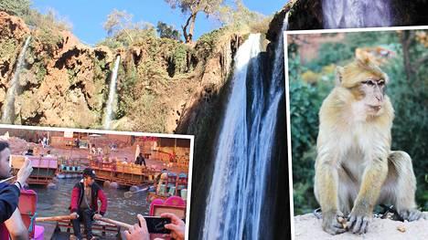 Vesiputouksella apinoiden kanssa – Marokko on myös tätä