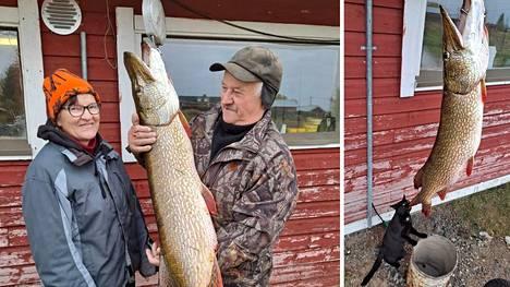 Leila ja Arvo Lintula saivat jättihauen Sodankylän Riipijärvellä.
