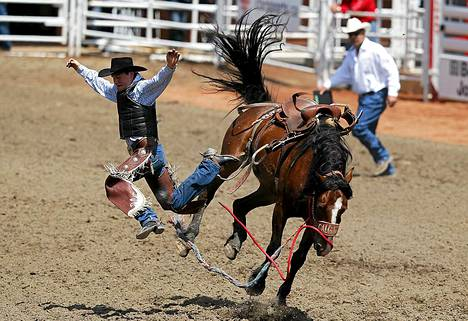 Yhdysvaltalainen Clint Maier lensi Upbeat Jester -hevosen selästä.