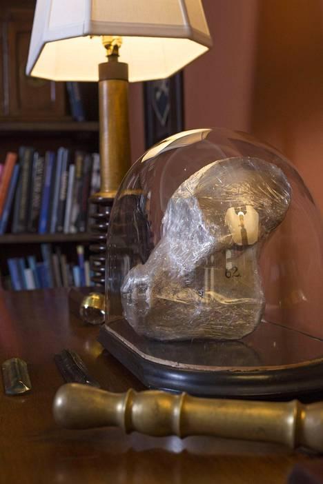 Oreck jätti kuljetuksessa käytetyn muovin vanhan orangin kallon päälle. –Se on nyt taiteellisemman näköinen.