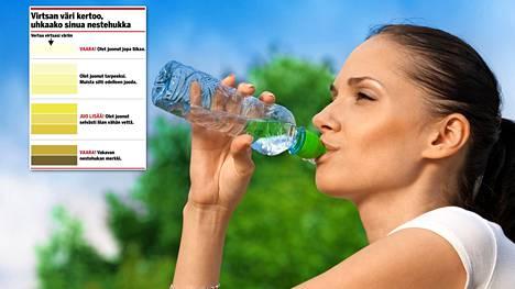 Veden ohella osa päivän nesteistä kannattaa helteillä nauttia vissyinä tai mehuina.