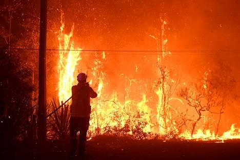Palomiehet taistelevat liekkejä vastaan Sydneyn pohjoispuolella.