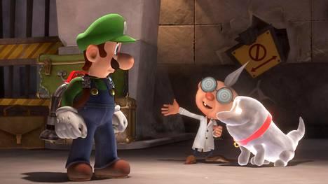 Professori E.Gadd ja aavekoira Polterpup pitävät huolta, että Luigi ei eksy tieltään.