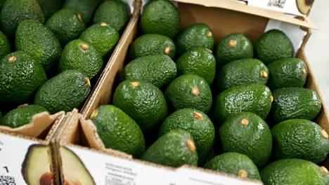 Neljän kilon avokadolaatikon hinta on kaksinkertaistunut vuodessa.