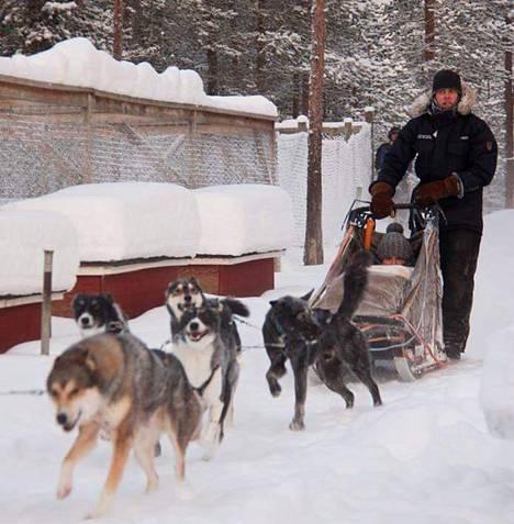 Jere Huuskonen oli töissä huskykennelissä, kun hän tapasi tulevan puolisonsa.