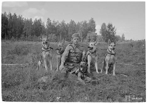 Luutnantti Pentti Luotola viiden kasvattamansa ja omistamansa koiran kera, jotka kaikki palvelevat sotakoirina.