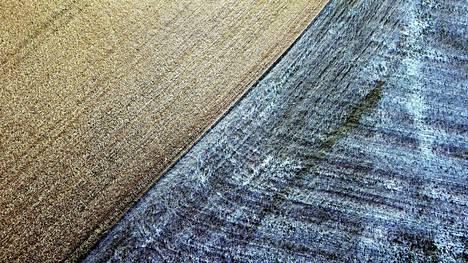 Maaseudun Tulevaisuus: Keskusjärjestöt asettuvat maatalouden kriisipaketin taakse
