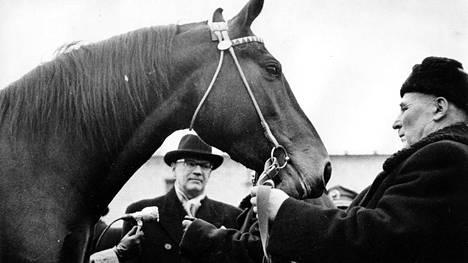 Urho Kekkonen sai lahjaksi tarkasti valikoituja orlov-rodun jaloimpia edustajia.