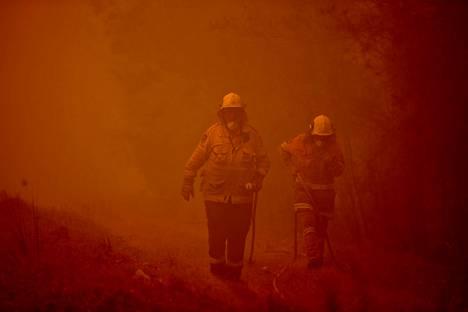 Palomiehet yrittävät torjua tulikuumaa paloa Moroyan kaupungin lähellä Uudessa Etelä-Walesissa.
