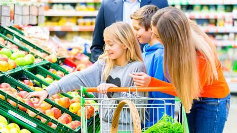 """""""Prismaperheen"""" mielikuva on yksi syistä, miksi nuoret aikuiset eivät ole tällä hetkellä innostuneita lastenhankinnasta."""