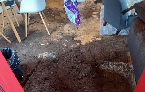 Luontokeskuksen saunakabinettiin oli levitelty säkillinen ulkohuussin kuiviketurvetta.