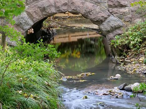 Longinoja on noin 6 kilometrin pituinen puro Helsingissä.