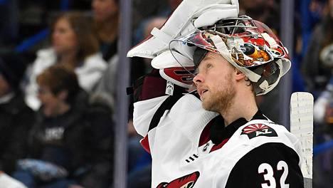 """Suomalainen NHL-vahti Antti Raanta kertoi koiransa vaikeuksista Arizonassa: """"Tassut palavat"""""""