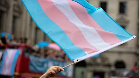 Transsukupuolisuutta kuvaava lippu on väreiltään vaaleanpunainen, vaaleansininen ja valkoinen.