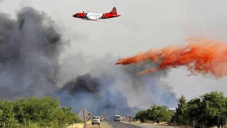 Lentokone heitti paloa hidastavaa nestettä puihin, jotka ovat vaarassa jäädä metsäpalojen alle. Viranomaiset yrittävät pysäyttää palot keinolla millä hyvänsä.