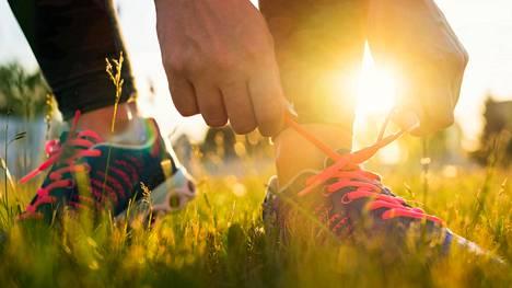 Kävelijöiden kannattaa mahdollisuuksien mukaan suunnata puistoihin ja metsiin, tuoreen tutkimuksen tulokset osoittavat.