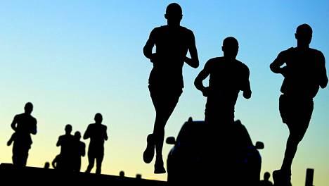 Juoksijoita kilpailemassa Two Oceans Maratonin reitillä.