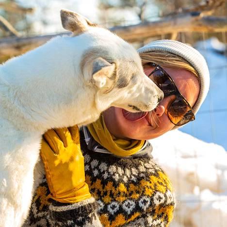 Marjaana Lähteenmäki kertoo huskyn olevan rotuna uskollinen.