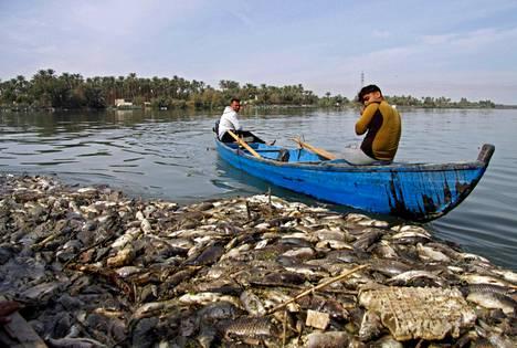 Kalakuolemat ovat suututtaneet monia, joiden elinkeino on riippuvainen kaloista.