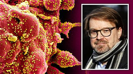 Professori Olli Vapalahti arvioi, etteivät nykyiset rajoitukset riitä, mikäli koronaviruksen muunnos saa jalansijaa Suomessa.