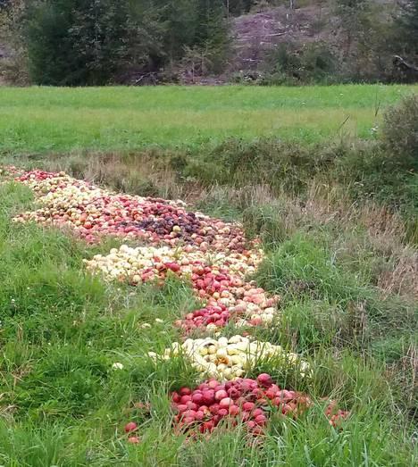 Ylimääräiset omenat eivät kuulu tienvarteen.