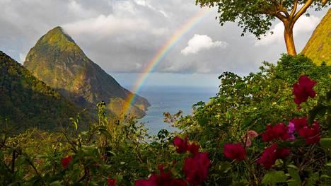 Saint Lucian paratiisimaiset maisemat haluttiin säästää mahdolliselta tuhkarokkotartunnalta.