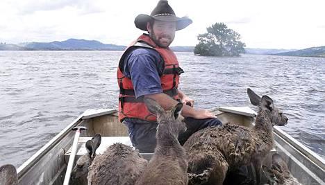 Tulvan alta pelastetut kengurut saivat venekyydin.