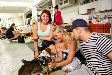 Salla Honkapää sekä koiranomistajat Aino-Liisa ja Waltteri valjastamassa Azurelia.