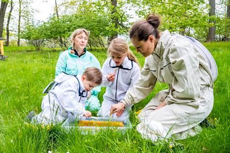 Hunajamaistiaiset olivat olennainen osa mehiläisten tutkimista.