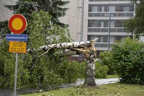 Myrsky katkoi puita Oulussa 21. kesäkuuta 2021.