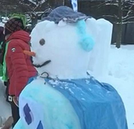 Kuva 8. Minkä puolueen lumiukko?