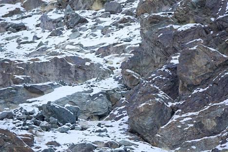 Lumisessa kalliomaisemassa kuvaan on ikuistunut...