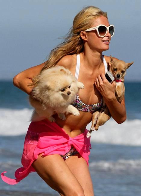 Paris Hilton keikisteli koiriensa kanssa Malibun hiekkarannalla.