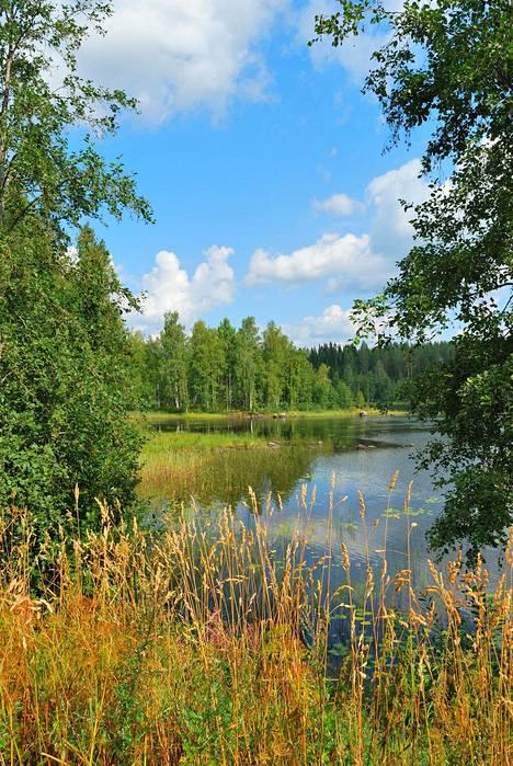 Yhdysvalloista Suomeen lomalle tullut poika hämmästeli Suomen kauneutta ja muutti maahan aikuisena.