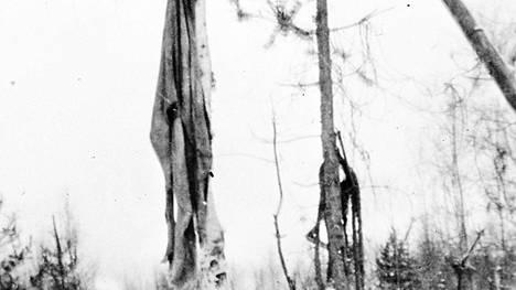 Seesjärvellä yllätettiin marraskuussa 1942 neuvostoliittolainen partio syömästä yhtä miehistään. Kiinnijääneen partion kohtalo on epäselvä, mutta makaaberi kuva lähti elämään omaa elämäänsä kiertäen sotilaalta toiselle. Tässä kuvaa on rajattu alkuperäisestä sen raakuuden vuoksi.
