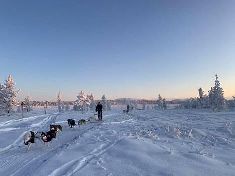 Ikonen painottaa, ettei heidän koiriaan missään nimessä odota karu kohtalo, vaikka talvikaudesta on tulossa haastava.