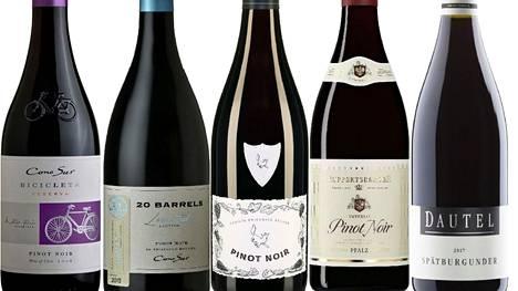Viisi punaviiniä syksyn sienisadolle. Pinot noiria pidetään oikukkaana kaverina, sillä huonoissa käsissä lopputulos voi muistuttaa keskinkertaista, alkoholipitoista mehua. Sitten ovat erikseen osaajat.