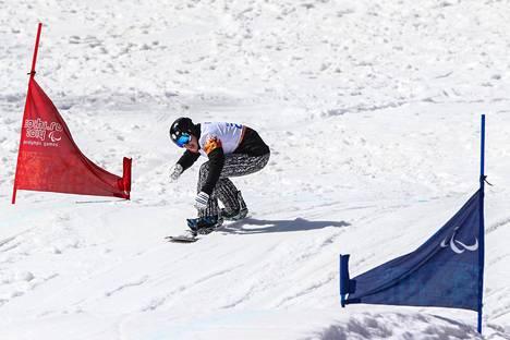 Matti Suur-Hamari oli yhdestoista Sotshin paralympialaisissa 2014.