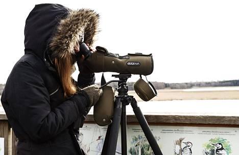 Lintubongarit säilyttävät turvavälit.