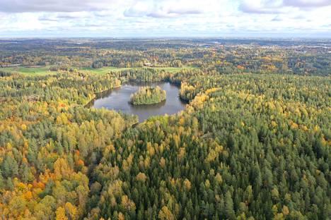 Dämman, tekojärvi 1950-luvulta Gumbölen mailla. Espoon nuorin järvi.