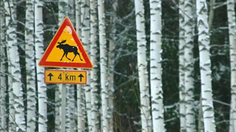 Hirvieläinmerkit kannattaa ottaa tien päällä todesta.