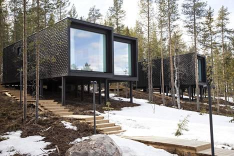 Condé Nast Traveller kehui artikkelissaan Lapin luonnon lisäksi Artic TreeHouse Hotellia.