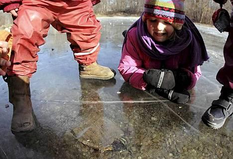Lapset katselivat lammen jään alla levännyttä kilpikonnaa Wienissä Itävallassa torstaina.