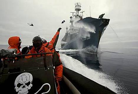 Pullot lentelivät ja vesitykit lauloivat, kun luonnonsuojelijat ja valaanpyytäjät ottivat yhtään Etelänapamantereen edustalla.