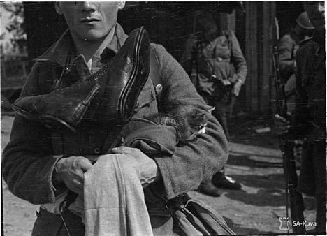 Kaiken tomun seasta löytyi kissan poika. Korpiselkä kk. 7.11.1941