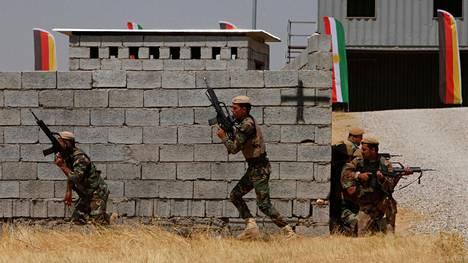 Kurdien peshmerga-joukot harjoittelivat Saksan joukkojen kanssa Irakin Erbilissä elokuussa.