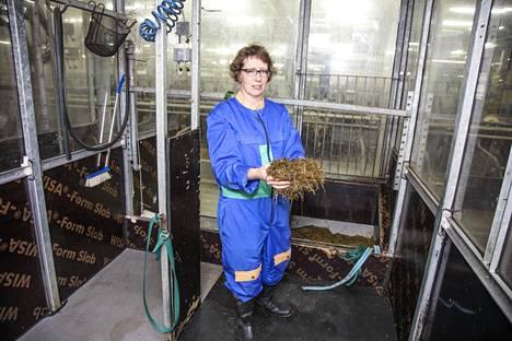 Tutkimusprofessori Marketta Rinne Luonnonvarakeskuksesta ei usko, että lehmien metaanipäästöistä täysin päästäisiin eroon. –Mutta niitä voidaan vähentää, hän sanoo. Lehmän rehu näyttelee isoa roolia, kun pötsin toimintaa tutkitaan.