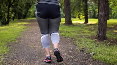 Tutkimuksessa huomattiin, että liikunta ei kumoa lihavuuden haitallista vaikutusta veren kolesteroli- ja sokeripitoisuuksiin.