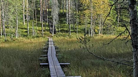Intialaislehden mukaan Suomi on peräti maailman coolein maa. Scoopwhoop hehkuttaa puhdasta ilmaamme ja tasa-arvoista yhteiskuntaa.